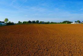 анализ почвы смоленск