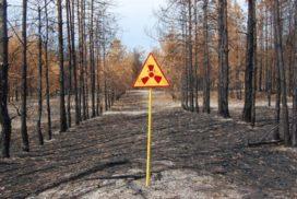 радиология почвы смоленск